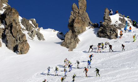 Adamello Ski Raid 2008