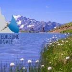 Pontedilegno-Tonale, tutti pazzi per l'e-bike
